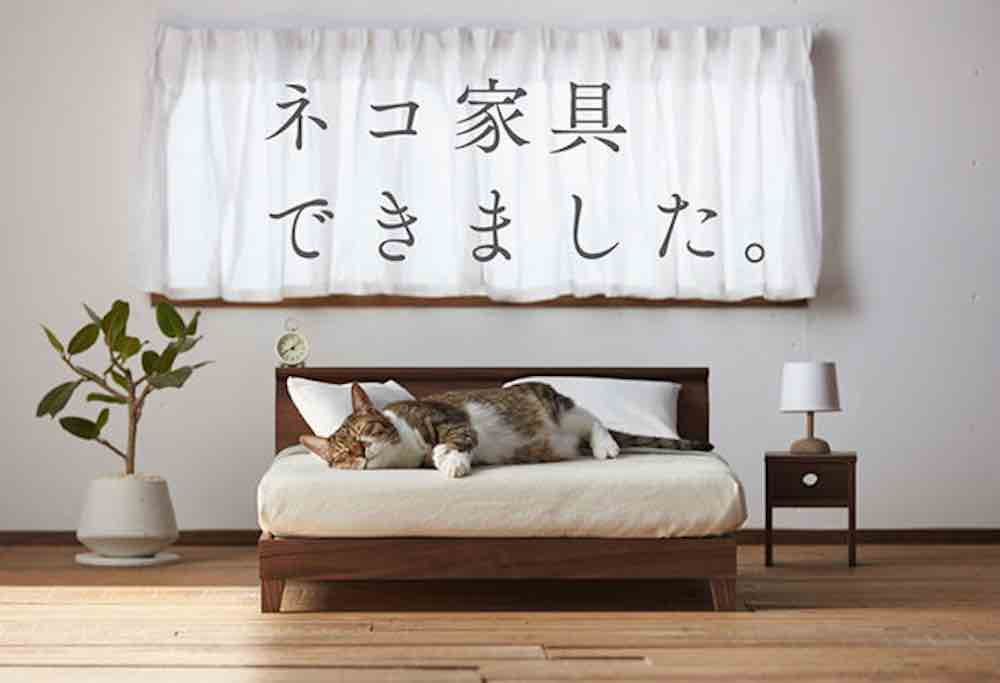 The sofa and bed are both commercially available through the manufacturer s  respective websites  but they can also be seen on display at the Okawa  Terrazza. This Adorable Tiny Furniture Collection Was Designed Just For Cats