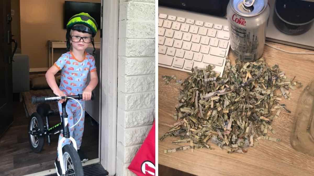 Toddler shreds over $1,000 in cash after finding parents' stash