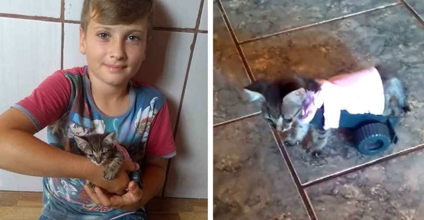 When 9-Year-old Sees a Kitten Who Can't Walk, He Builds a Tiny Wheelchair to Change Its Life