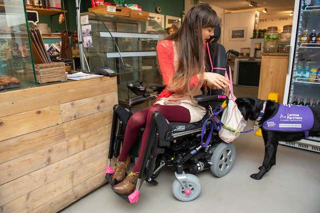 Service Dog Who Can Fetch Food, Clothing, and Pay for Shopping Has Transformed This Woman's Life