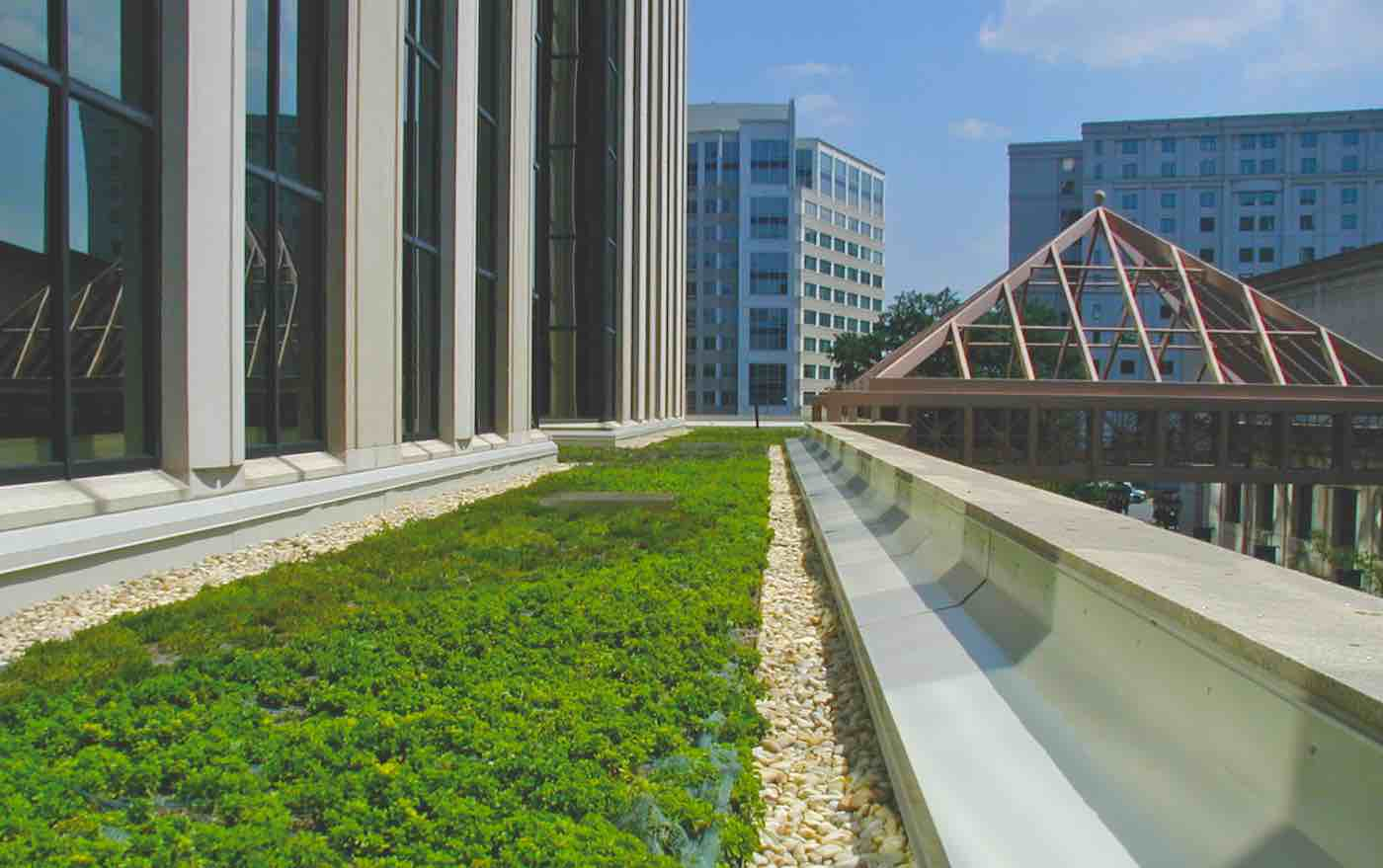 Nyc Passes Bold New Legislation Requiring Green Roofs On