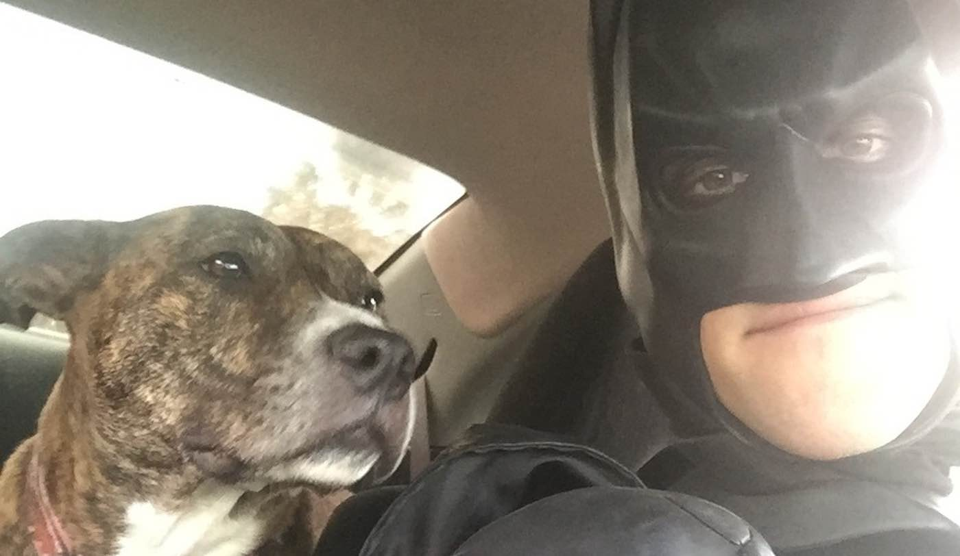 Guy Dressed as Batman Has Rescued Dozens of Shelter Pets