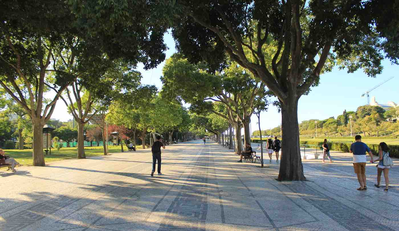 Increasing Tree Cover on City Streets May Be Like Community