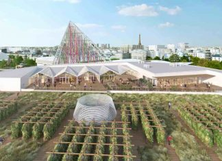 World Archives - Good News Network
