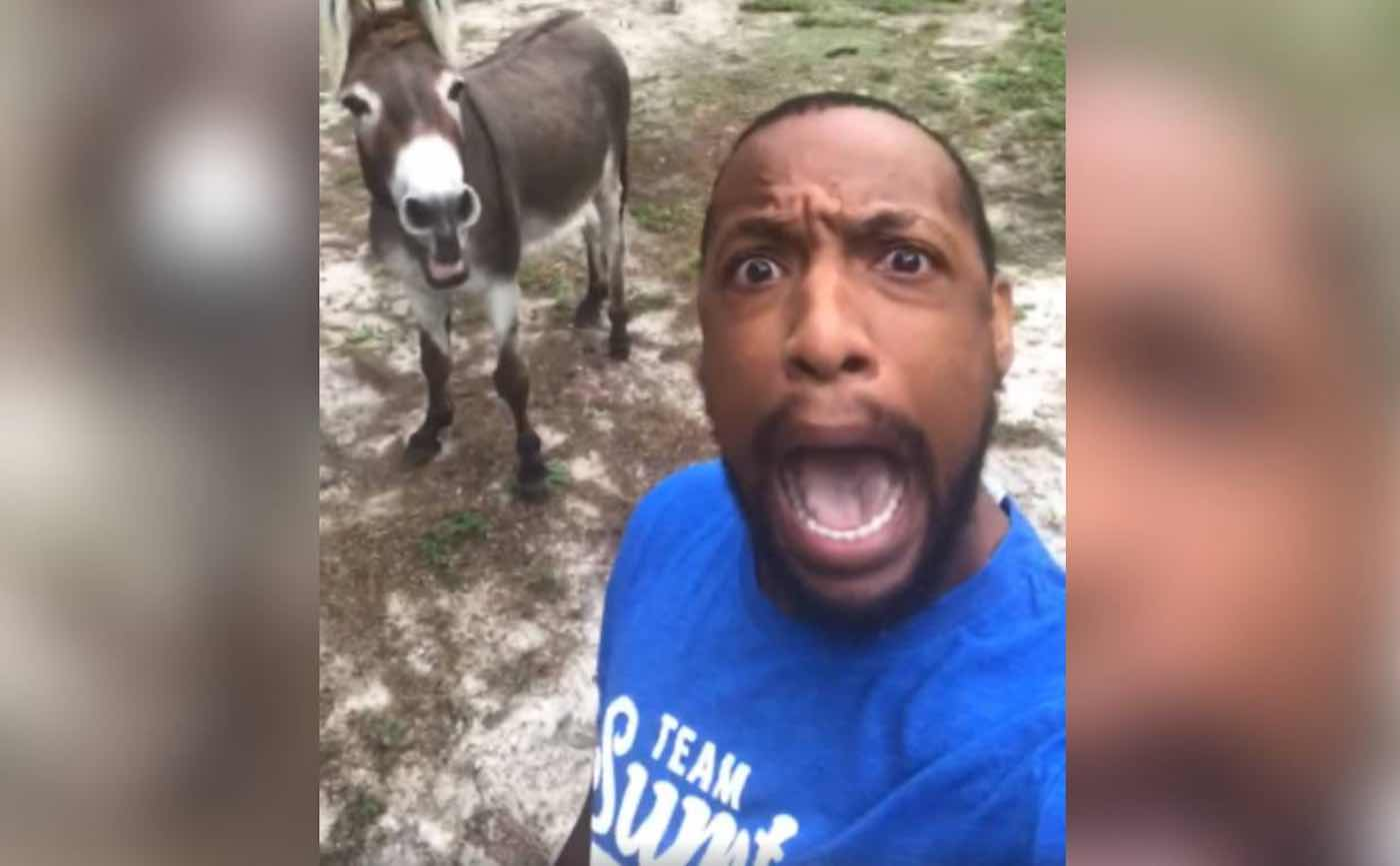 Man and His Donkey Are Going Viral for Their Enthusiastic Duet of 'The Circle of Life' From Lion King