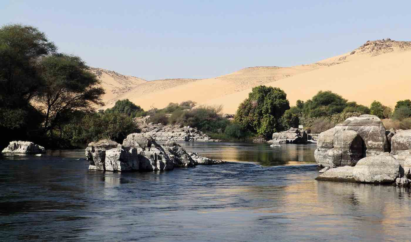 Scientists Use Recycled Sewage Water to Grow 500-Acre Forest in the Middle of Egyptian Desert