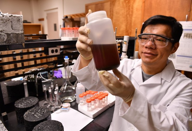 Rather Than Polluting Icy Roadsides With Salt, Scientists Use Recycled Biowaste From Fruit