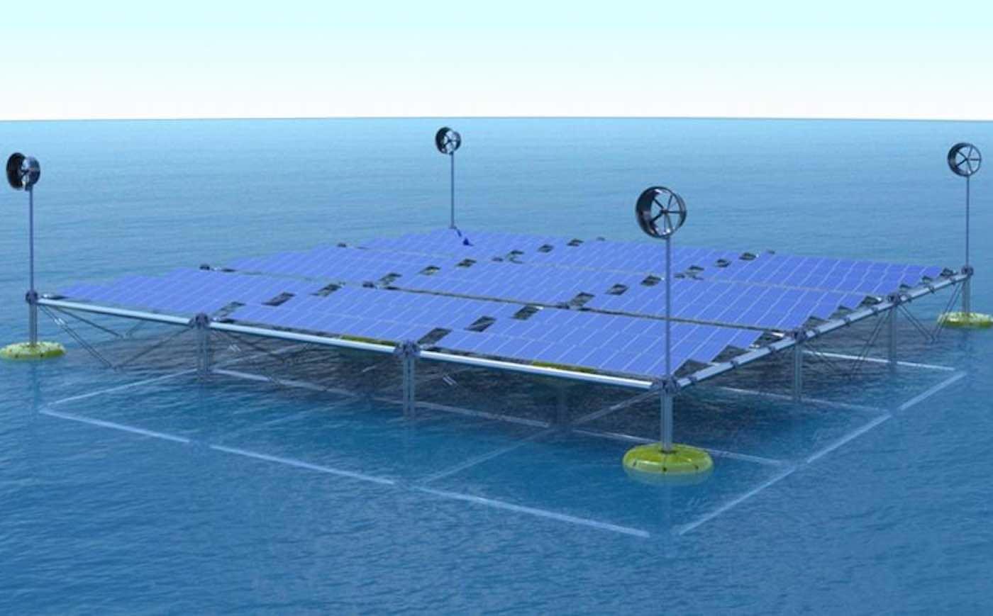 Ocean Wave Platform