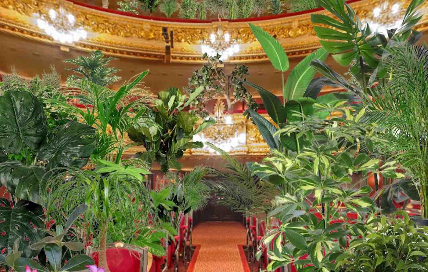 Opera wypełni się roślinami doniczkowymi