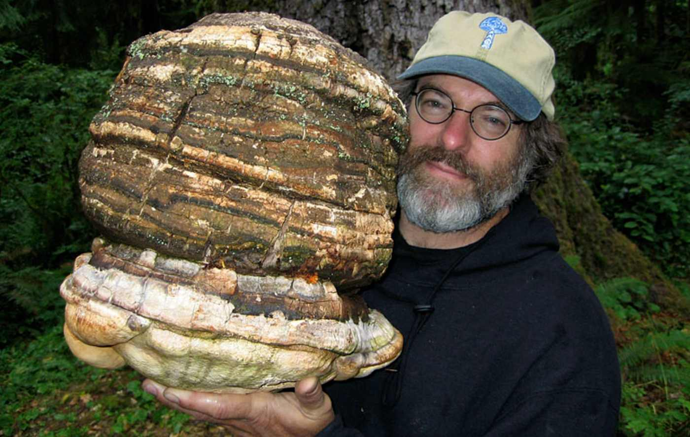 the-steve-irwin-of-mushrooms-paul-stamets-works-to-save-rare-ancient-fungus-to-protect-us-from-pandemics