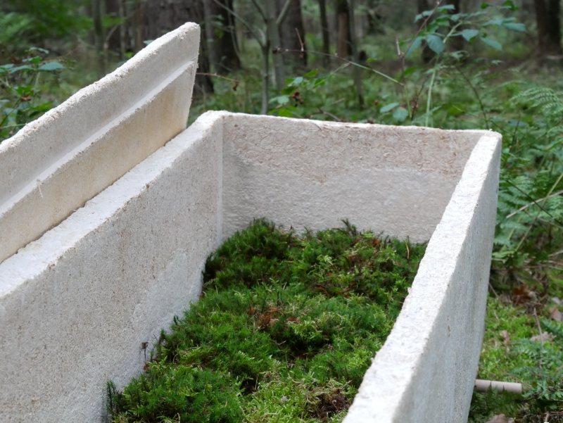 Голландец изобрел гроб, превращающий тела в грибы: «Мы питательные вещества, а не отходы»